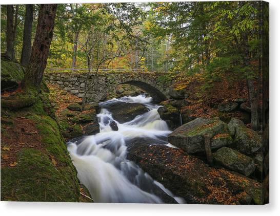Canvas Print featuring the photograph Gleason Falls by Juergen Roth
