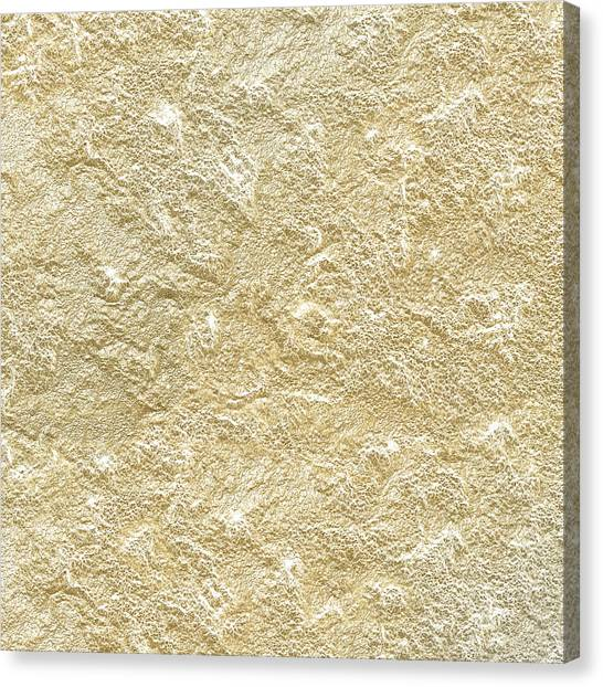 Gold Stone  Canvas Print