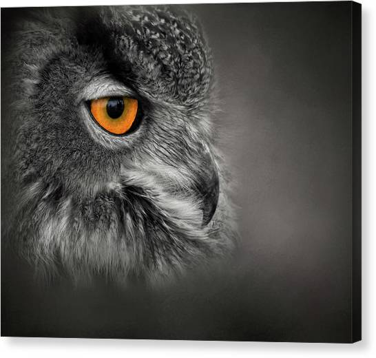 Golden Eye Canvas Print