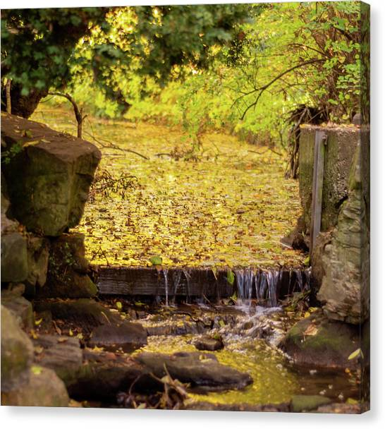 Canvas Print featuring the photograph Golden Leaf River by Scott Lyons