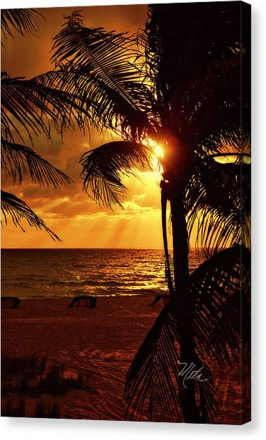 Golden Palm Sunrise Canvas Print