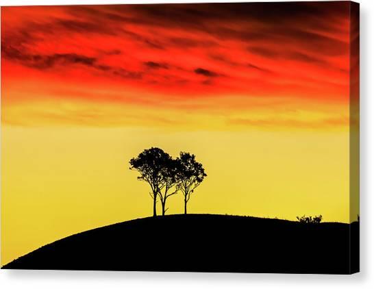 Rolling Hills Canvas Print - Golden Valley by Az Jackson