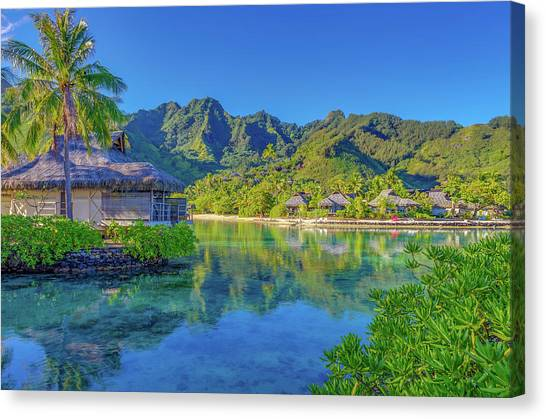Snorkling Canvas Print - Good Morning From Mo'orea French Polynesia by Scott McGuire