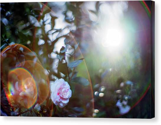 Canvas Print featuring the photograph Good Morning Starshine, The Earth Says Hello by Quality HDR Photography