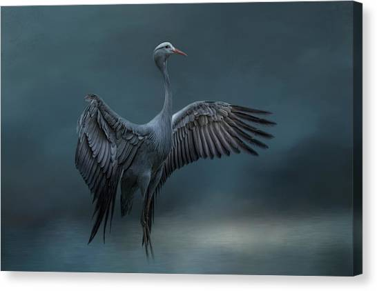Graceful Dancer Canvas Print