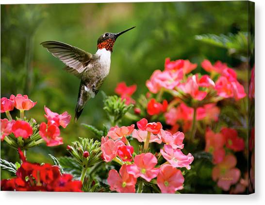 Graceful Garden Jewel Canvas Print
