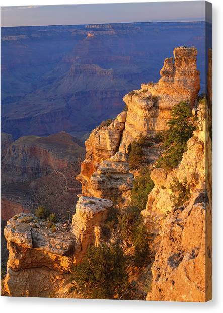 Grand Canyon National Park   P Canvas Print by Ron thomas