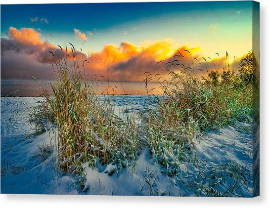 Grass And Snow Sunrise Canvas Print