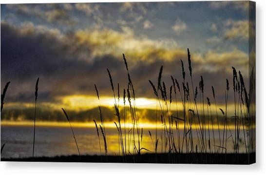 Grassy Shoreline Sunrise Canvas Print