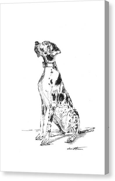 Great Dane 02 Canvas Print
