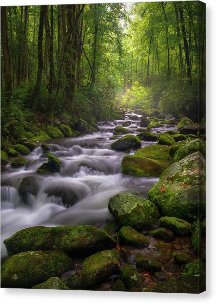 Great Smoky Mountains Gatlinburg Tennessee Canvas Print