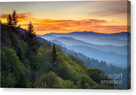 Tn Canvas Print - Great Smoky Mountains National Park by Dave Allen Photography