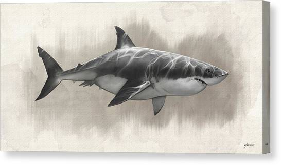 Great White Shark Drawing Canvas Print by Steve Goad