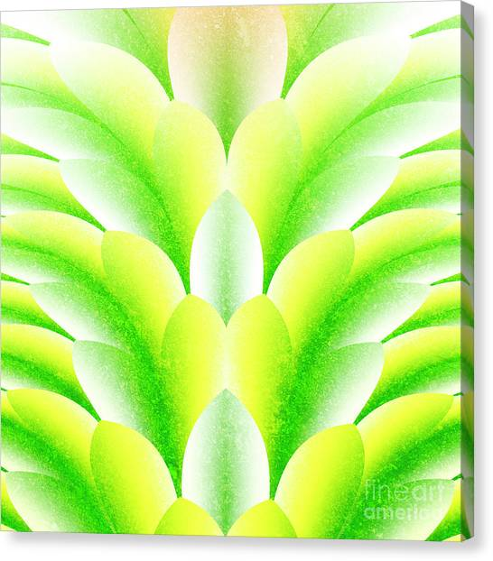 Green Petals Canvas Print