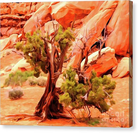 Greeter Pine At Park Avenue Canvas Print by Bob Lentz