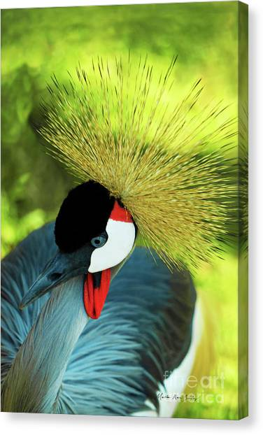 Canvas Print featuring the painting Grey Crowned Crane Gulf Shores Ab A101218 by Mas Art Studio