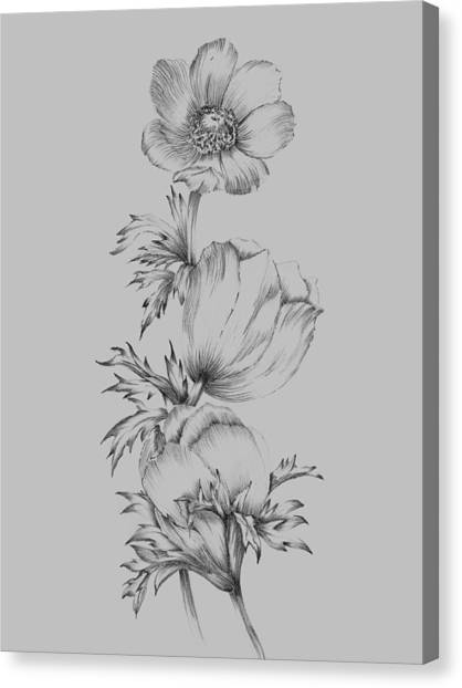 Dahlias Canvas Print - Grey Flower Sketch II by Naxart Studio