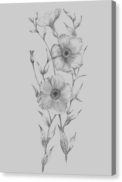 Dahlias Canvas Print - Grey Flower Sketch Illustration I by Naxart Studio