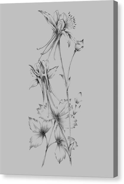 Dahlias Canvas Print - Grey Flower Sketch by Naxart Studio