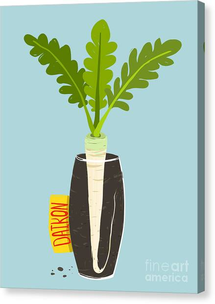 Ingredient Canvas Print - Growing Daikon Radish With Green Leafy by Popmarleo
