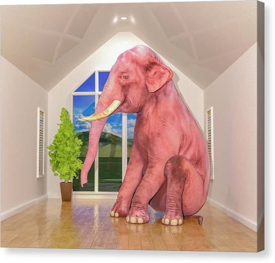 Indoors Canvas Print - Guess What's In The Room by Betsy Knapp