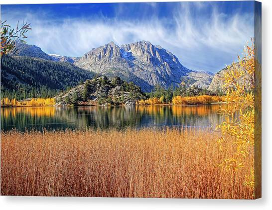 June Lake Canvas Print - Gull Lake View From The Marsh by Donna Kennedy