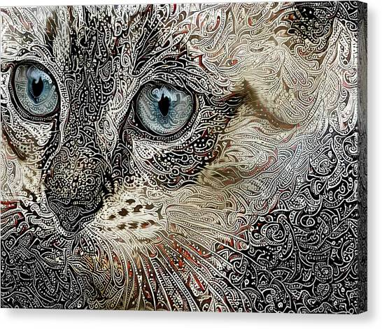 Gypsy The Siamese Kitten Canvas Print