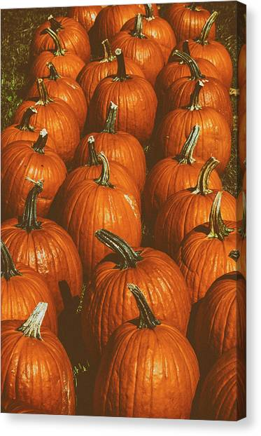 Halloween Harvest - 2 Canvas Print