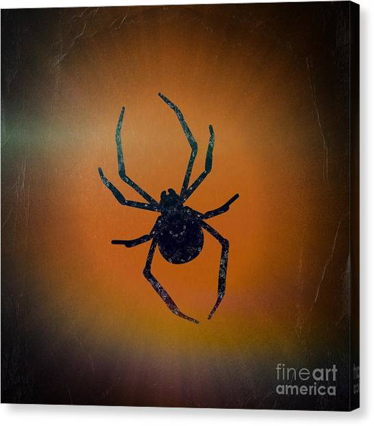 Canvas Print featuring the mixed media Halloween Spider  by Rachel Hannah