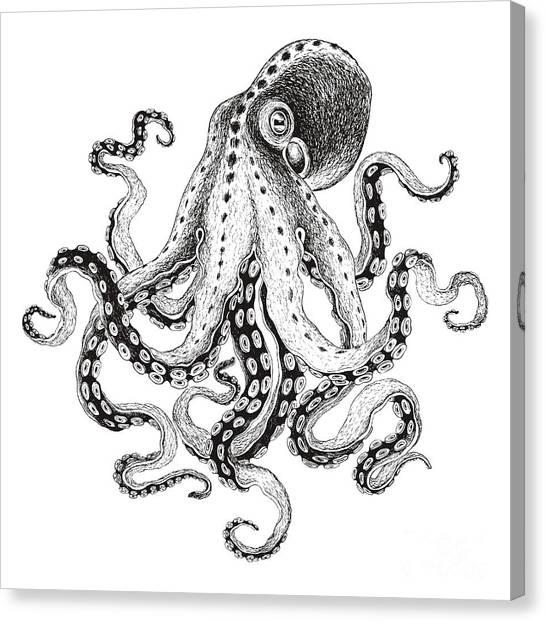 Zoology Canvas Print - Hand-drawn Illustration Octopus, Vector by Nikiparonak