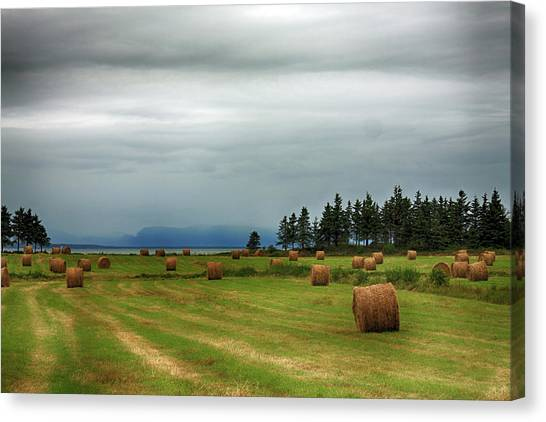 Canvas Print featuring the photograph Harvest Time In Canada by Tatiana Travelways
