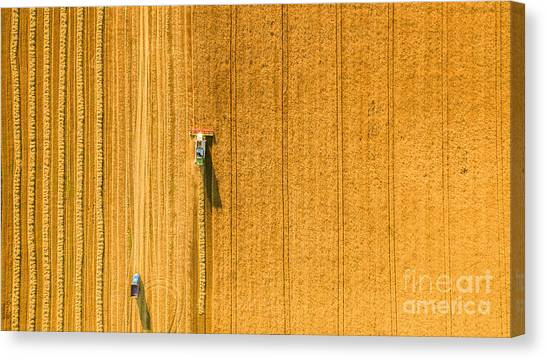 Farmland Canvas Print - Harvester Machine Working In Field by Lals Stock