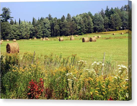 Canvas Print featuring the photograph Hay Bails And Wild Flowers by Tatiana Travelways