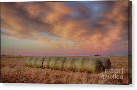 Hay Bales On The High Plains Canvas Print