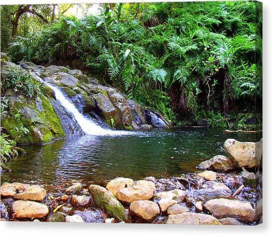 Healing Pool - Maui Hawaii Canvas Print