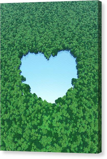 Heart Shaped Lake In Forest Canvas Print by I-works/amanaimagesrf