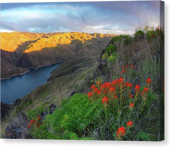 Hells Canyon View Canvas Print by Leland D Howard