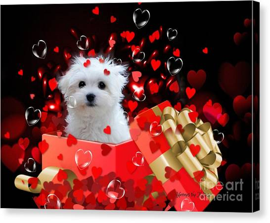 Hermes The Valentine Boy Canvas Print