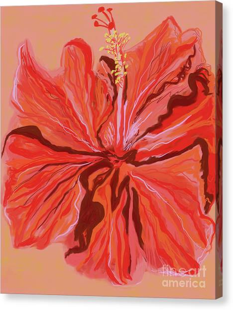 Hibiscus Color Lines Canvas Print