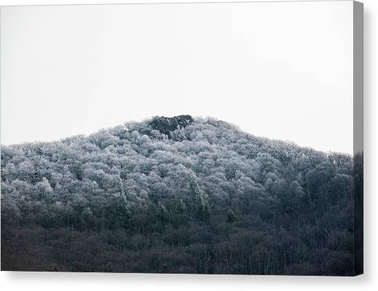 Hoarfrost On The Mountain Canvas Print