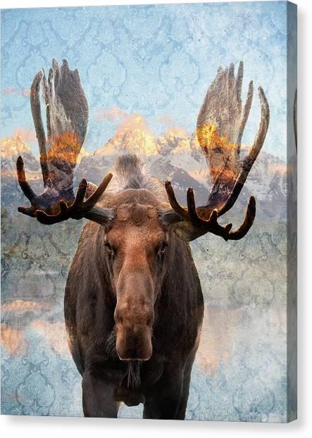 Hometown Moose Canvas Print
