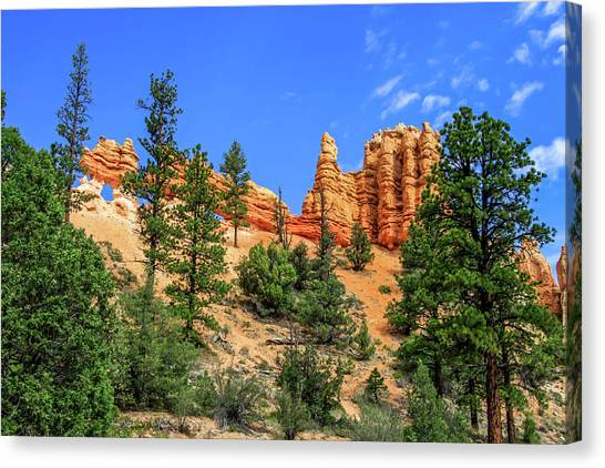 Canvas Print featuring the photograph Hoodoo Heaven by Dawn Richards