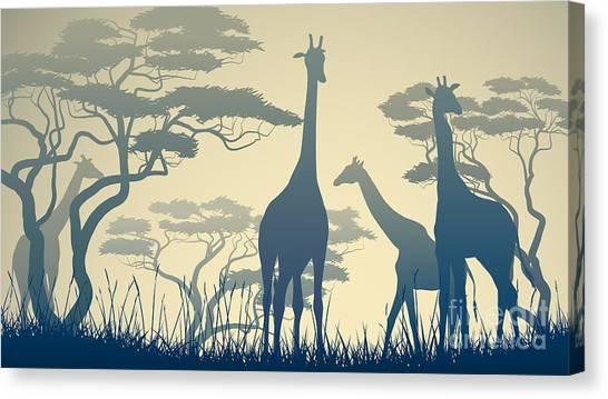 Livestock Canvas Print - Horizontal Vector Illustration Of Wild by Vertyr