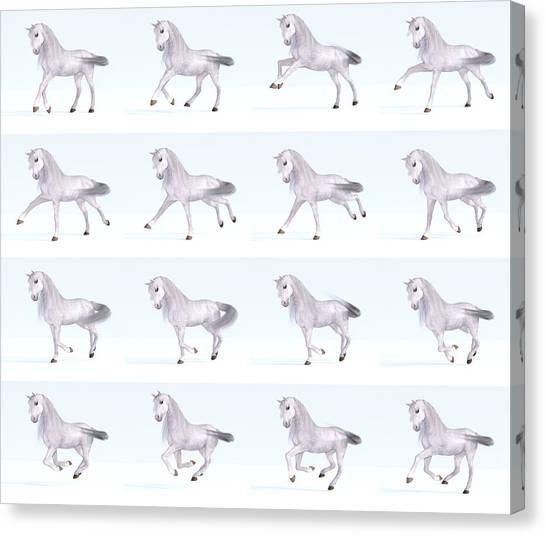 Fun Run Canvas Print - Horse Gallop Sequence by Betsy Knapp