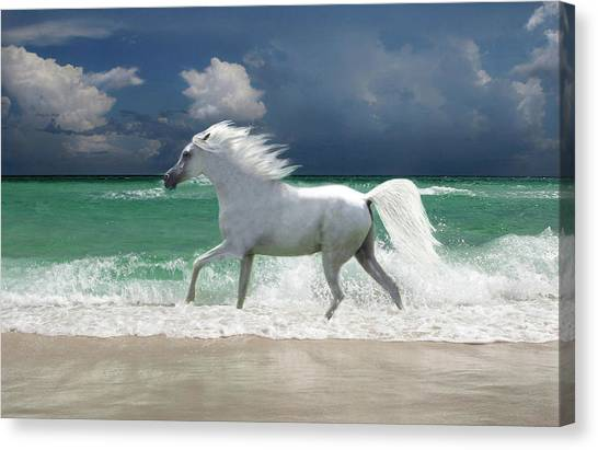 Horse Running Through Surf Canvas Print