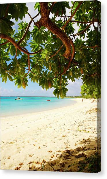 Houmaleeia Beach Canvas Print by Oliver Strewe
