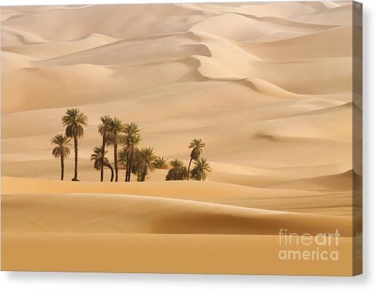 Gobi Canvas Print - Huge Dunes Of The Desert. Fine Place by Denis Burdin