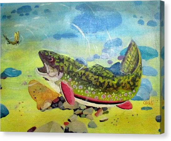 Hungry Trout Canvas Print