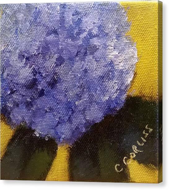 Hydrangea I Canvas Print