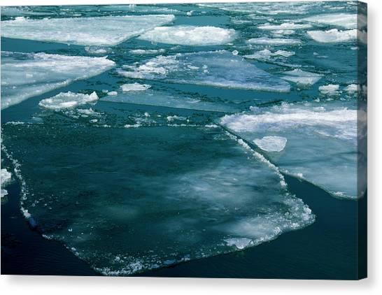 Ice 2 Canvas Print